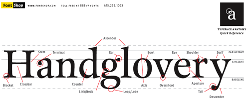 Typography Visual Communication